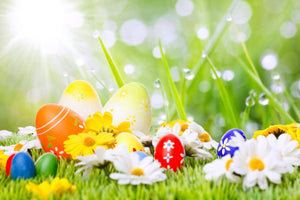 Easter Colorful Eggs And Flowers On Grass With Sunshine For Holiday Photography Backdrop - Shop Backdrop