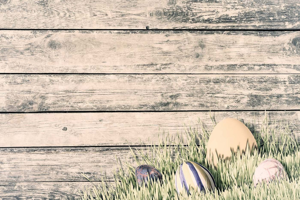 Easter Eggs In Grass With Grungy Wood Wall Photography Backdrop J-0753