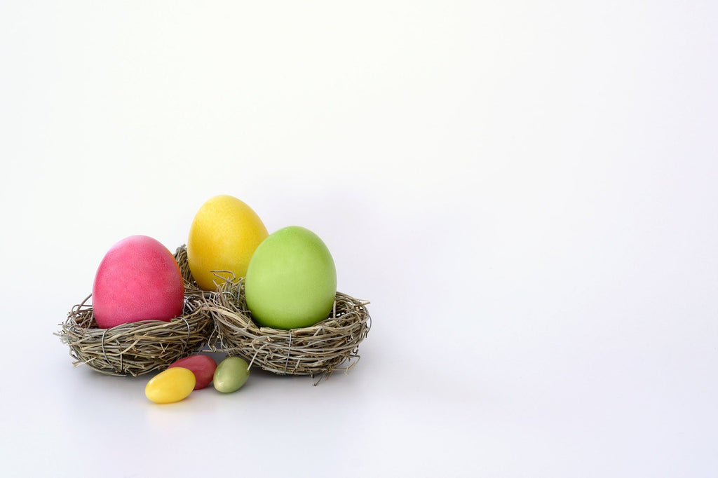 Easter Eggs In Nest On White Gray Solid Background Backdrop - Shop Backdrop