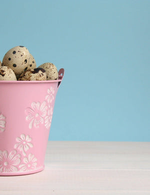 Easter Eggs In Pink Pail On Wood Floor With Lighter Blue Background Backdrop - Shop Backdrop