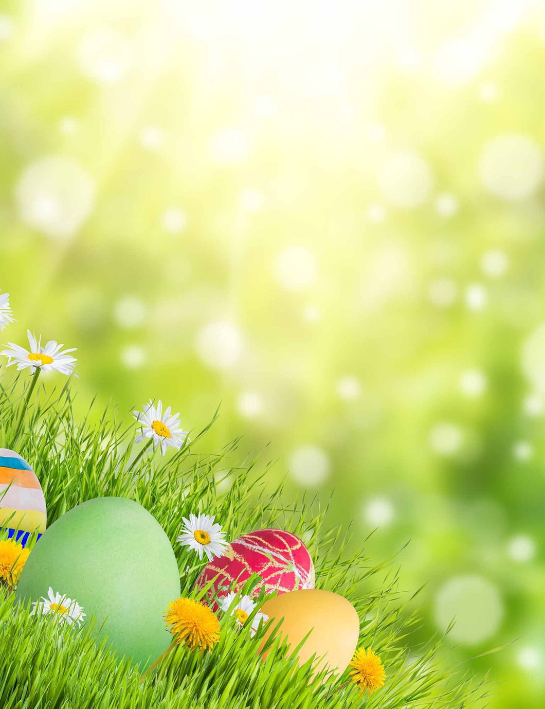 Easter Eggs In Sunshine Bokeh Sparkle Photography Backdrops - Shop Backdrop