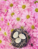 Eggs In Basket On Flower Background For Easter Photography Backdrop