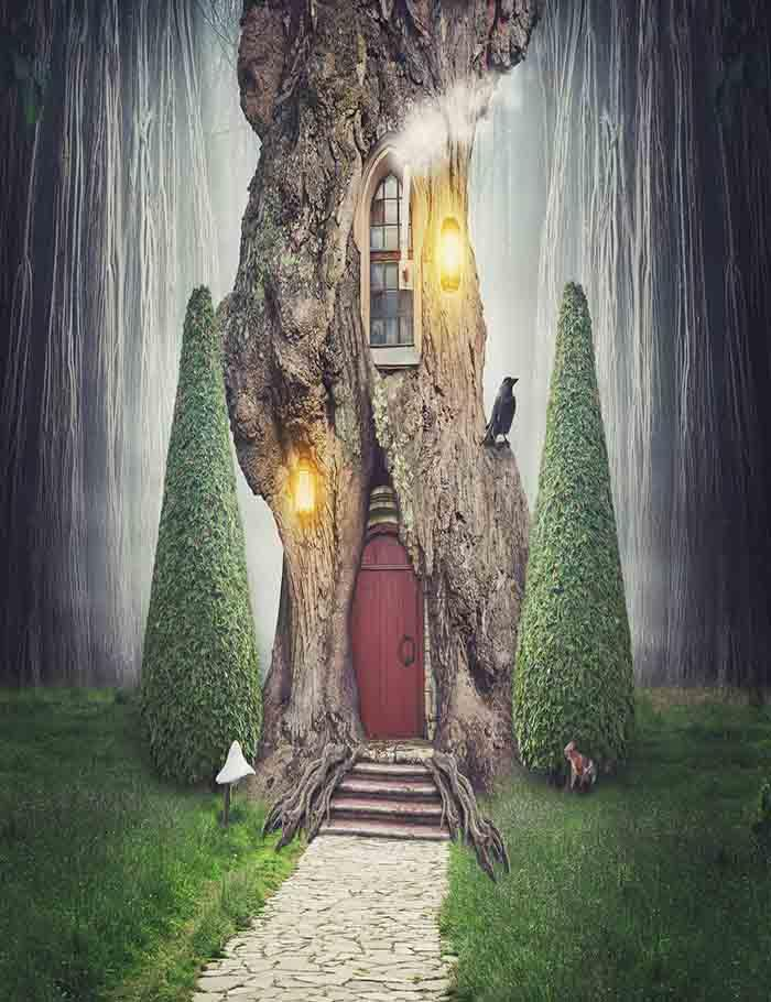 Fairy Tree House In Fantasy Forest With Stone Road Photography Backdrop J-0213