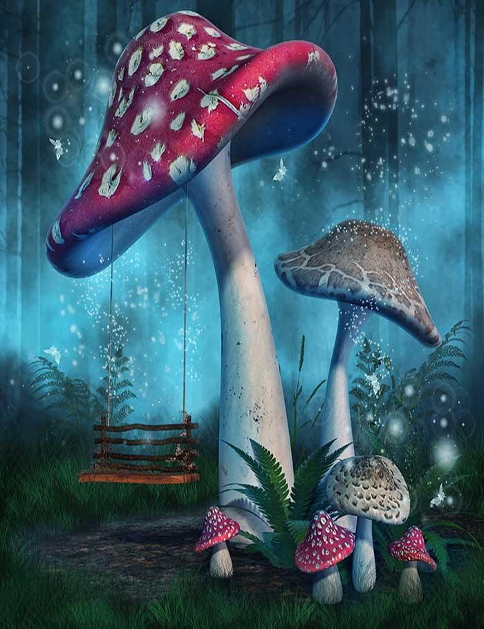Fantasy Mushrooms With Fairy Swing In Forest Photography