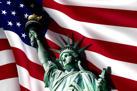 Flag And Statue Of Liberty For Indenpendence Day Photography Fabric Backdrop  J-0004