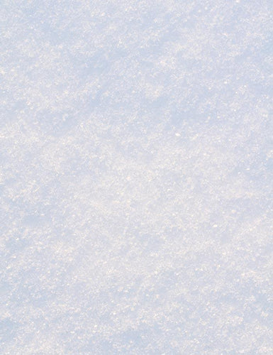 Fresh Snow Texture Floor For Winter Photography Backdrop J-0269
