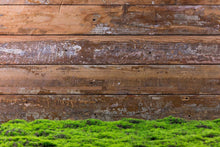 Green Grass Floor With Wood Wall Backdrop For Photography J-0761