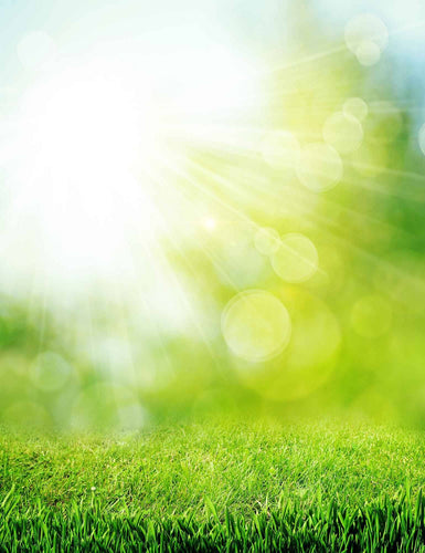 Green Grass In Bokeh Sunshine For Baby Photography Backdrop - Shop Backdrop