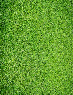 Green Lawn Floor Mat Photography Backdrop - Shop Backdrop