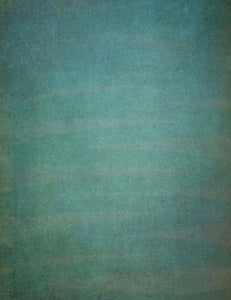 Grungy Green Printed Old Master Photography Backdrop J-0782