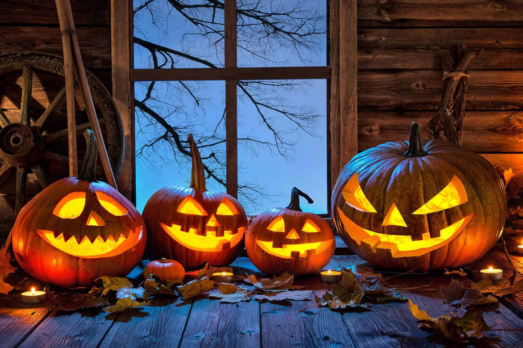 Halloween Background Christmas Pumpkin On Wood Floor Backdrop - Shop Backdrop