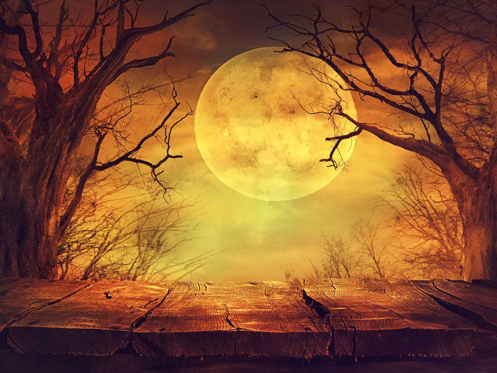 Halloween Background With Ball Moon Photography Backdrop - Shop Backdrop
