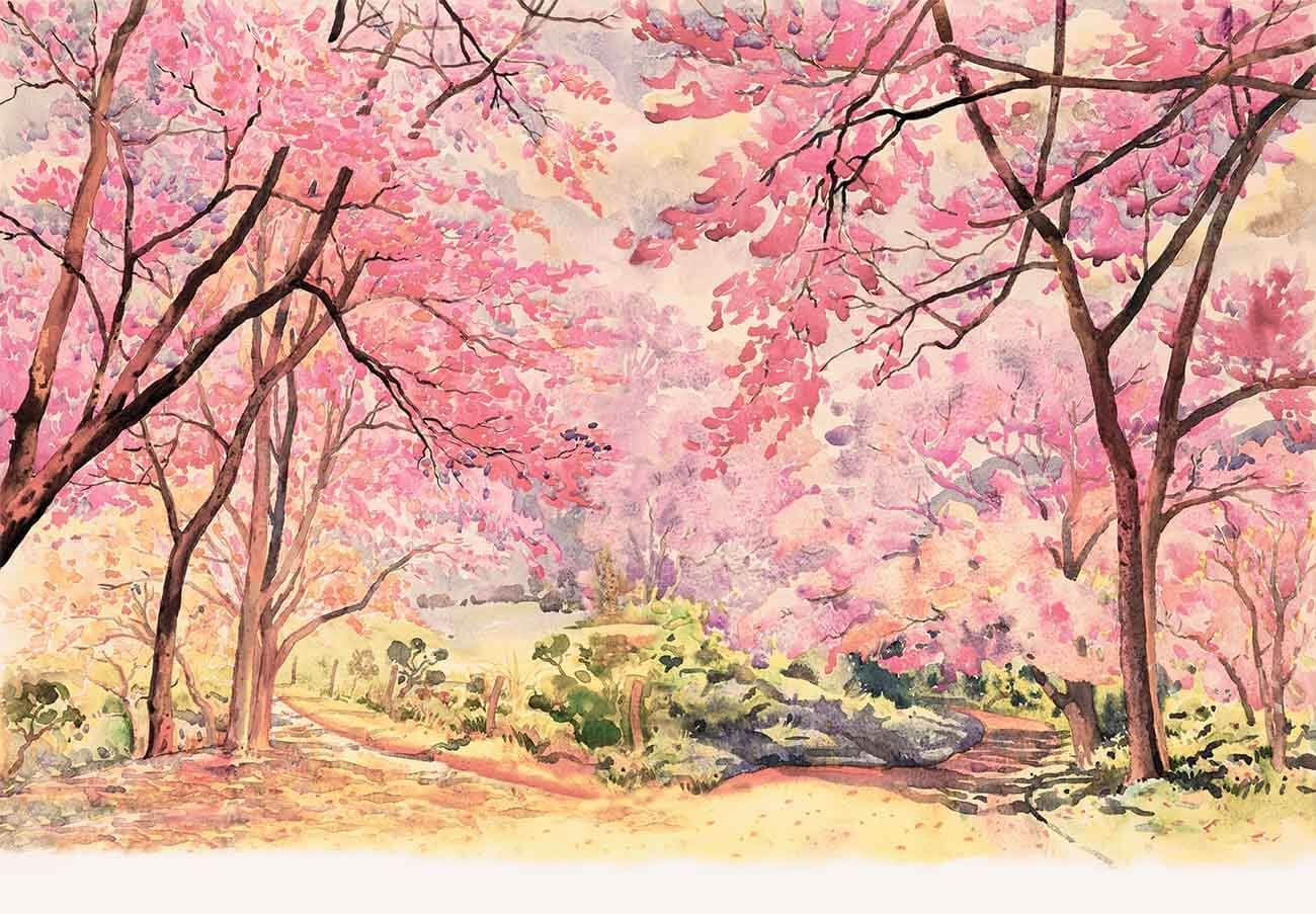 Hand Painted Watercolor Spring Flower Tree Photography