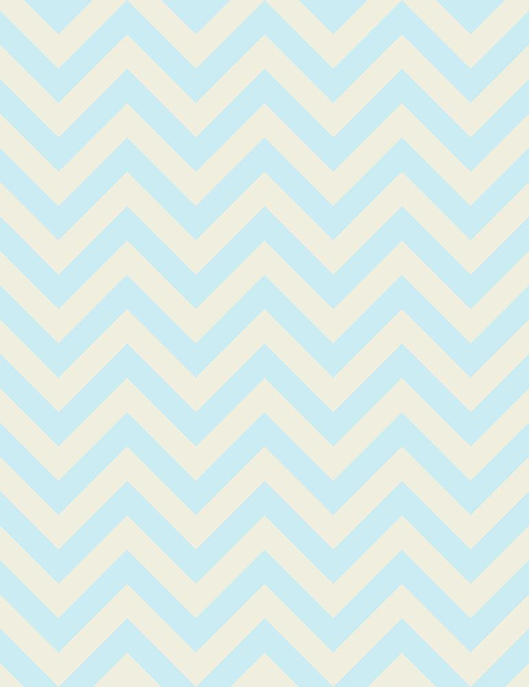 Light Blue And Peach  Chevrons Photography Backdrop Q-0595