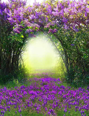 Magic Spring With Purple Flower Photography Backdrop J-0516