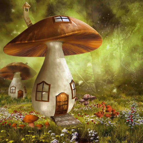 Mushroom Rooms With Pumpkin Photography For Halloween Backdrop