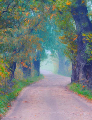 Oil Painted Autumn Road With Trees Photography Backdrop N-0078