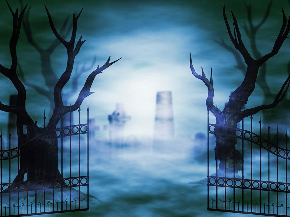 Open Iron Gate And Dead Tree In Frog Backdrop For Photography