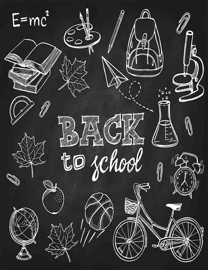 Painted Basketball Books For Children Back To School Photography Backdrop J-0276