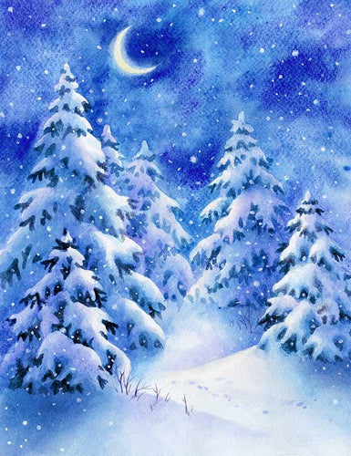 Painted Snow Forest Night With Moon Photography Backdrop N-0040