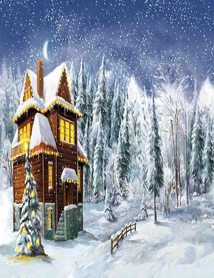 Painted Wooden Room In Snow Night Photography Backdrop J-0127