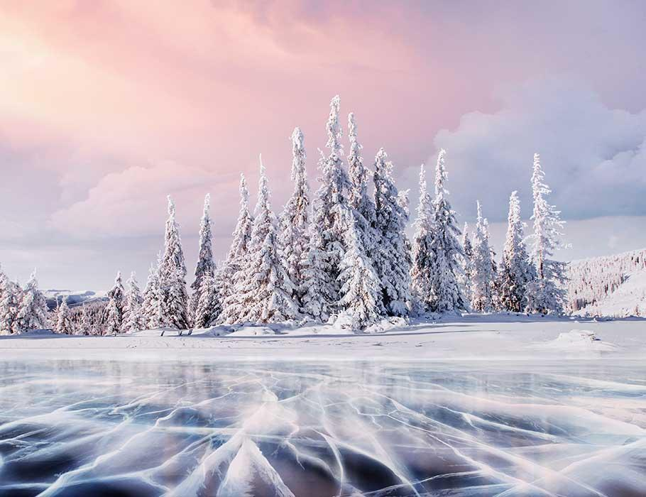 Pine Forest Covered Snow With Ice River Photography Backdrop J-0200