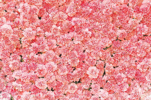 Pink Carnation Flower Wall For Wedding Photography Backdrop  J-0551