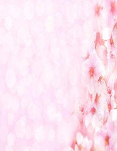 Pink Flower With Pink Bokeh Background For Spring Photography Backdrop  J-0182