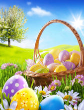Printed Easter Eggs Meadow And Sunlight Background Photography