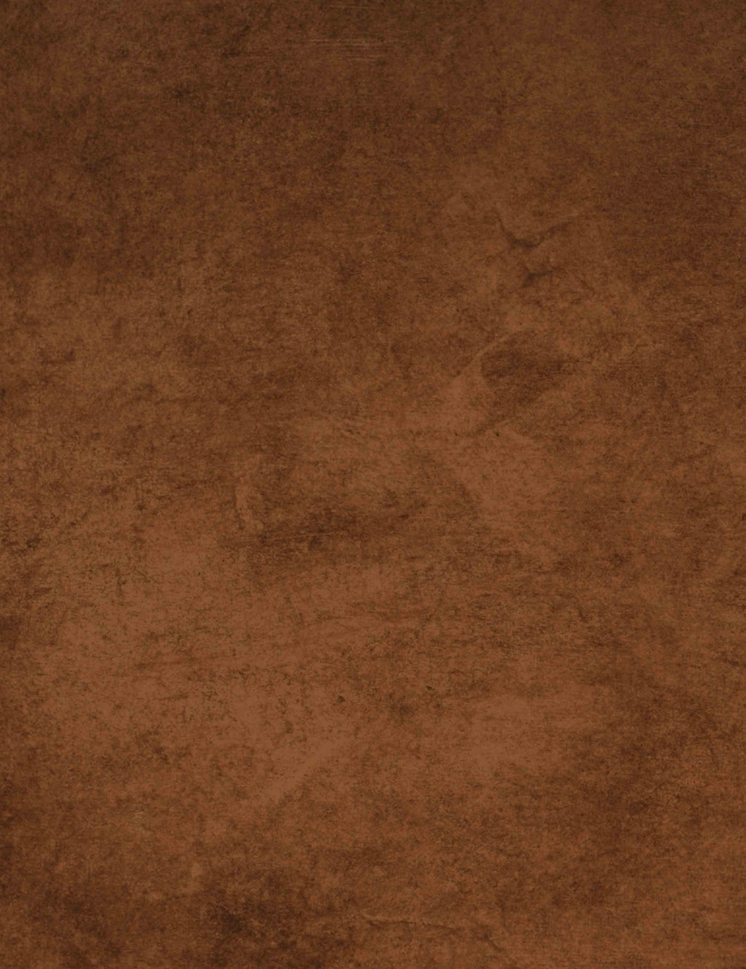 Printed Old Master Light Brown Texture Nearly Solid Backdrop