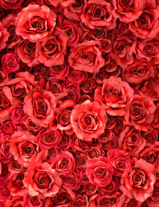 Red Rose Flowers Wall Backdrop For Wedding Photography S-2544