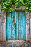 Retro Aqua Garden Wood Door Dark Gray Wall Backdrop
