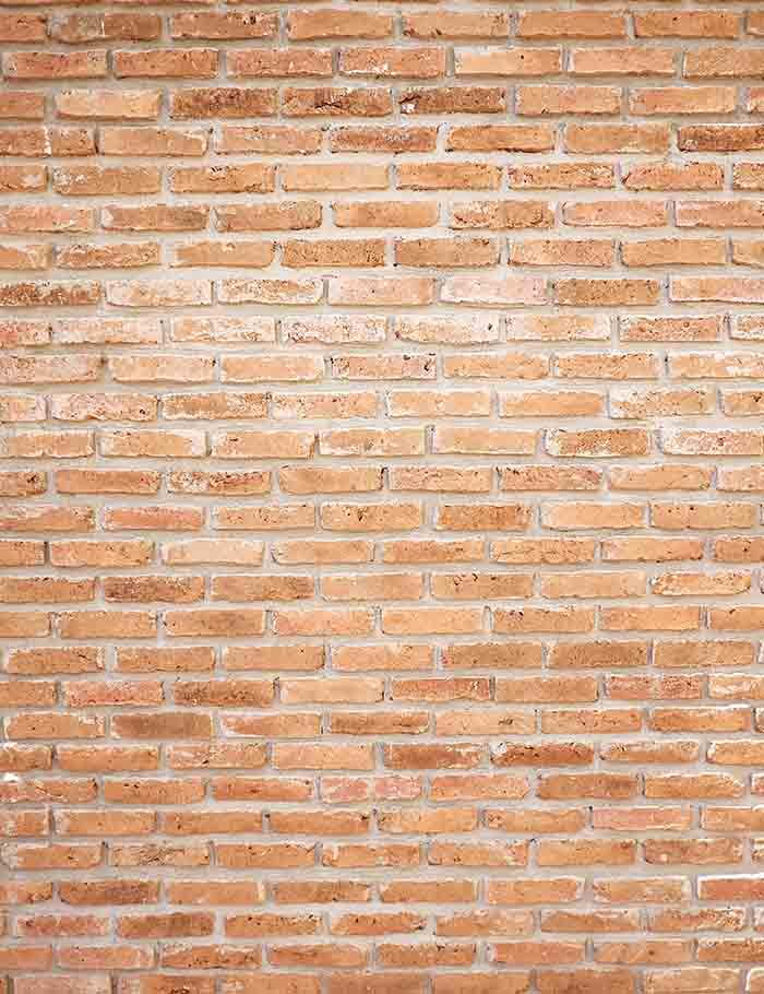 Retro Old Brick Texture Wall Photography Backdrop J-0288