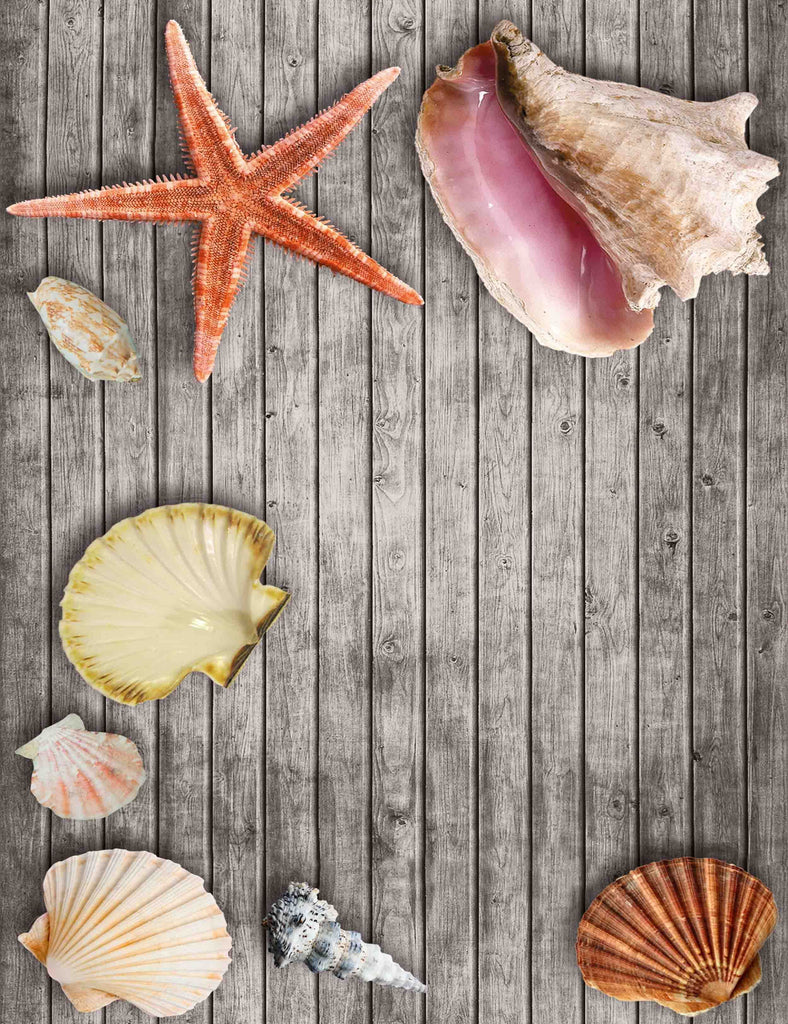Seashells And Starfish On Gray Wood Floor Backdrop
