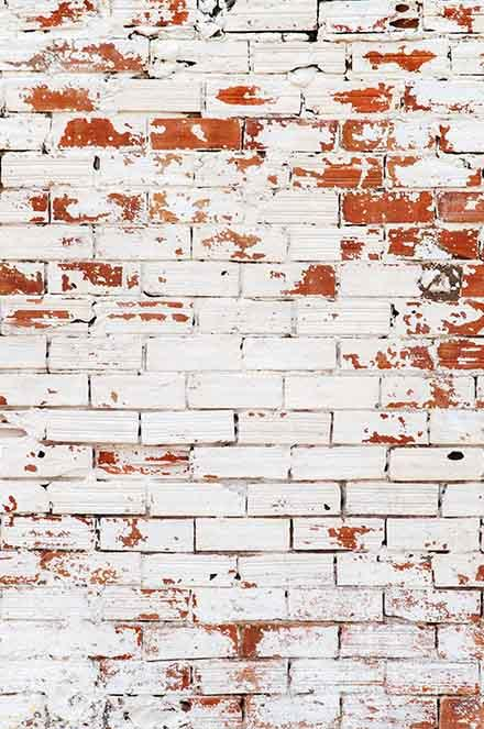 Senior Brick Wall Texture Backdrop For  Photography  Q-0241