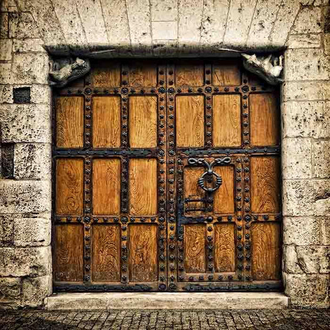 Senior Old Wooden Door With Stone Wall Photography Backdrop J-0254