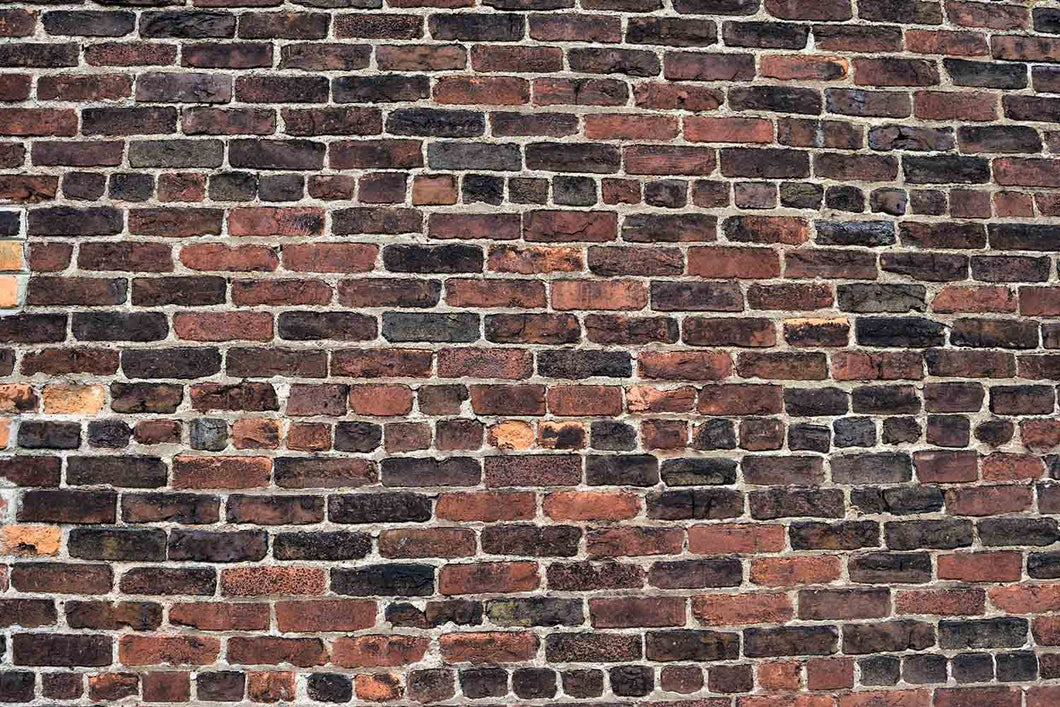 Senior Red And Black Brick Wall Texture Photo Backdrop