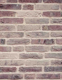Senior Red Brick Wall Texture Photography Backdrop - Shop Backdrop