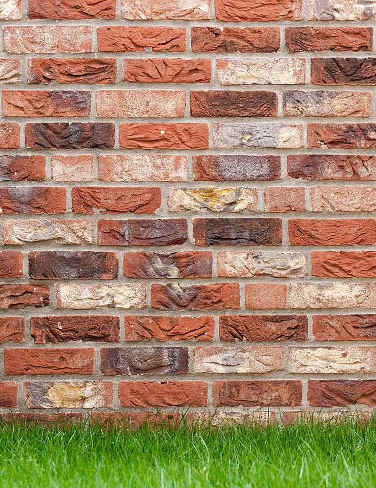 Senior Red Brick Wall Texture With Grass Floor Backdrop For Photography