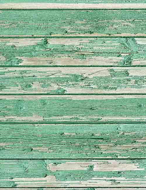 Shedding Senior Lime Green Paint Wood Floor Texture Backdrop Photography
