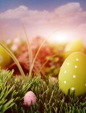 Easter Eggs On Grass In Sunset Backdrops For Photography - Shop Backdrop