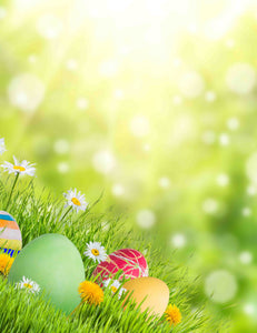Bokeh Sunshine Easter Eggs Grass Wild Flower Backdrops - Shop Backdrop