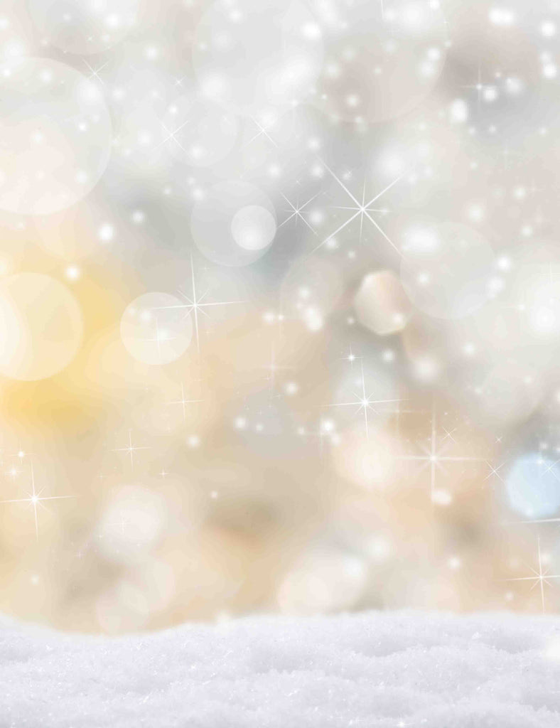 Silver Bokeh Background With Snow Photography Backdrop Q-0134
