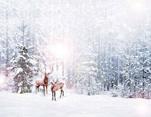 Snow-covered Forest With Deers Backdrop For Winter Photography J-0080