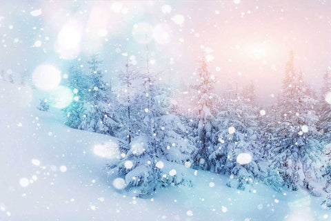 Snow Covered Trees With Bokeh Sunlight Photography  Backdrop J-0177