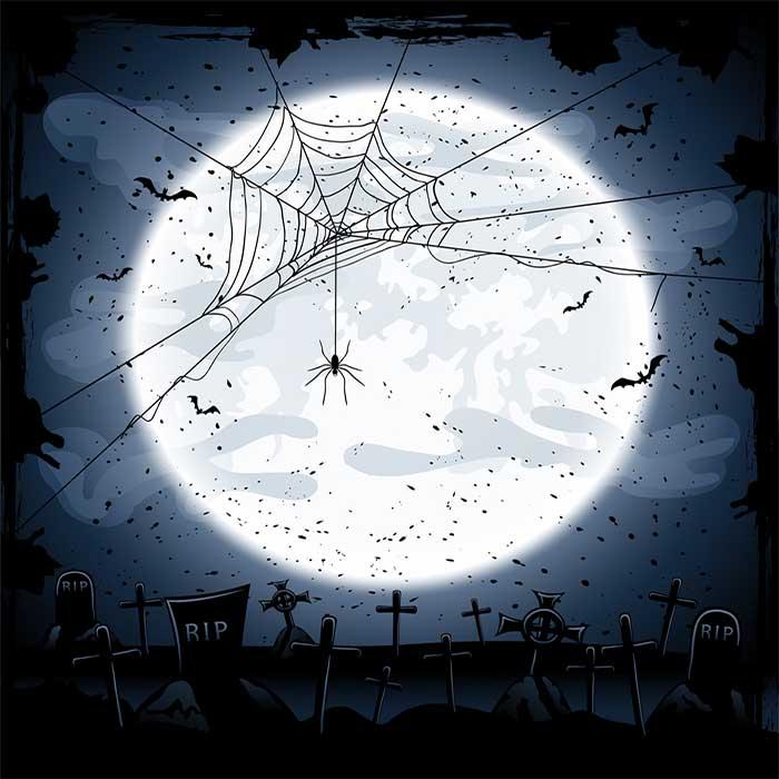 Spider Web In Cemetery With Full Moon Photography Backdrop J-0253