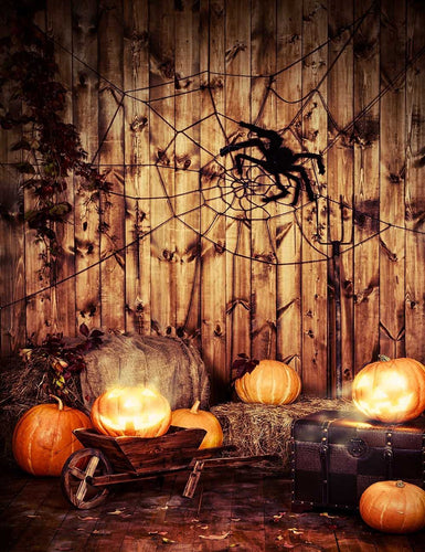 Spider Web Pumpkin For Halloween Photography Backdrop J-0654
