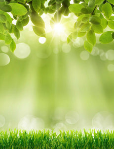 Spring Green Grass Sunshine Bokeh Photography Backdrops