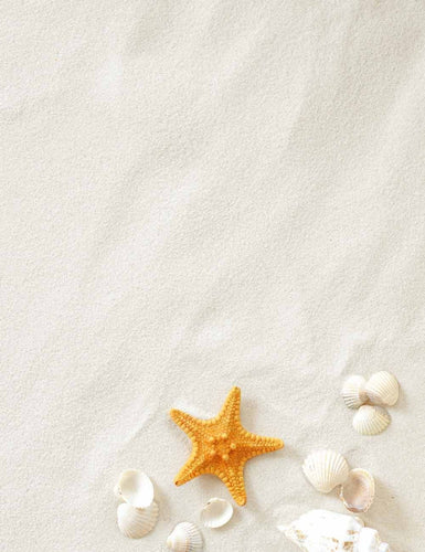 Starfish And Shell On Seashell Beach For Baby Photography Backdrop