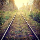 Train Tracks Through The Autumn Forest Photography Backdrop J-0316